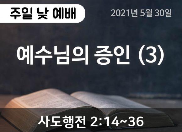 예수님의 증인 (3)